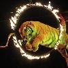 Цирки в Лихославле